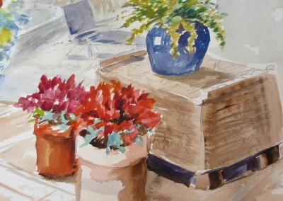 painting flowers and landscapes watercolour techniques paint andalucia ltd